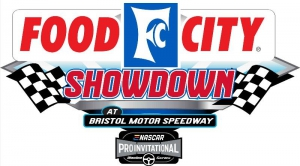 Virtual Bristol Motor Speedway the site of this weekend's eNASCAR iRacing Pro Invitational series race, the Food City Showdown